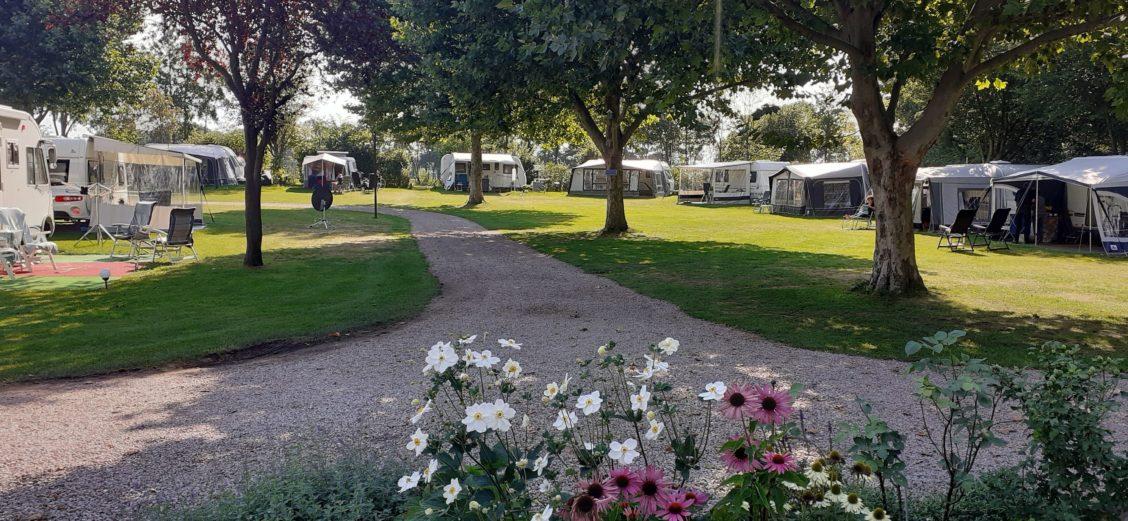 Platanenhofje - camping in de Achterhoek